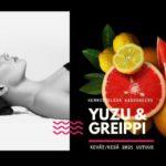 Uusi Kasvohoito Sothys Yuzu & Greippi Kauneushoitola BellaHelena Oulu 2021 Featured Divi WordPress Image